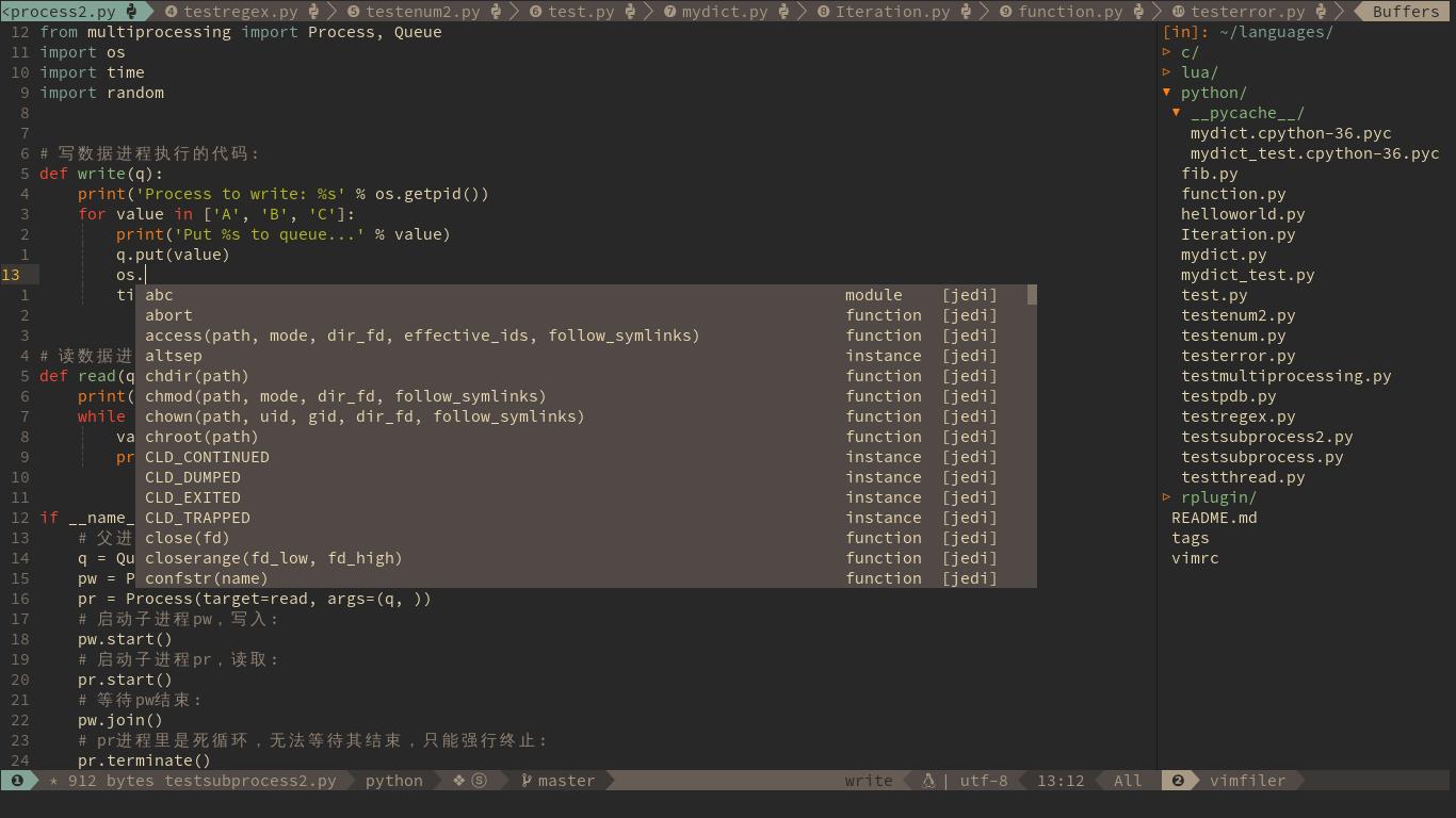 Vim Python Code Editor